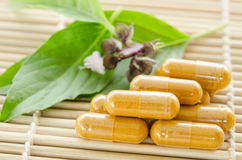 Yellow herb medical capsule and green leaf. Royalty Free Stock Photo