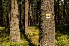 Yellow hiking mark Stock Images