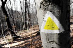 Yellow hiking sign on a tree Stock Images