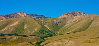 Yellow hill and rock Altai mountain Royalty Free Stock Photos