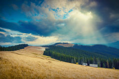 Yellow hill_vintage Royalty Free Stock Photos