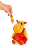 yellow hippo toy and hand with carrot Stock Images