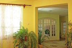 Yellow home interior. Yellow living room interior with plants Royalty Free Stock Images