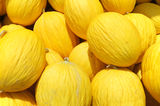 Yellow Honey dew melon Stock Photography
