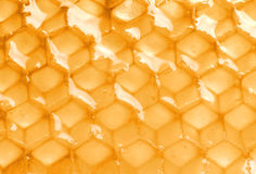 Yellow honeycomb with honey closeup Royalty Free Stock Photography