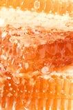Yellow honeycomb slice Royalty Free Stock Photography