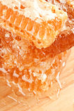Yellow honeycomb slice Royalty Free Stock Image