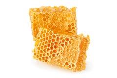 Yellow Honeycomb slice closeup Stock Image