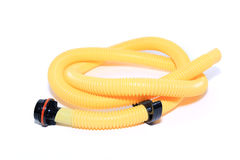 Yellow hose Royalty Free Stock Photography