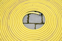 Yellow hose Stock Photography