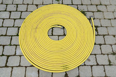 Yellow hose Stock Images