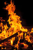 Yellow and hot blaze of fire in the dark Royalty Free Stock Photography
