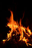 Yellow and hot blaze of fire Royalty Free Stock Photography