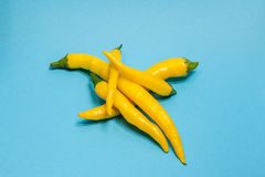 Yellow hot chili pepper isolated on blue Royalty Free Stock Photography