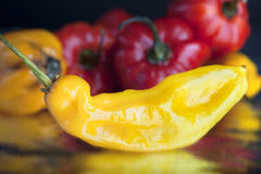 Yellow hot pepper Stock Photography