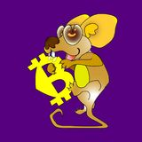 Yellow icon bit hungry eats the mouse. bitcoin symbol isolated on dark red background. A cartoon  illustration. Bitcoin heart. Yellow icon bit hungry eats the Royalty Free Stock Images