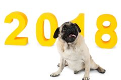 Yellow inscription 2018, next to it a small dog sits. Symbol of the new year. Isolation. Yellow inscription 2018, next to it a small dog sits. Symbol of the new royalty free stock photography