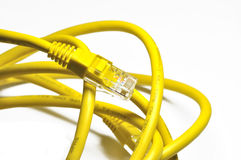Yellow internet cable Royalty Free Stock Photos