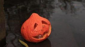 Yellow jack-o-lantern in the water stock video