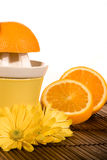 Yellow juicer Stock Images