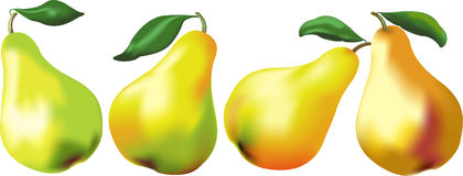 Yellow juicy pears Stock Image