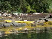 Yellow Kayak on the Shore of an Island in Maine stock image