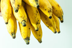 Yellow kerala small banana fruit. Bunch of yellow small banana fruit of kerala india Royalty Free Stock Images