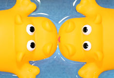 Yellow kiss. Couple of yellow toy hippos kissing on a valentine's date royalty free stock image