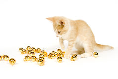 Yellow kitten playing with Christmas Decorations Stock Photography