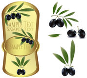 Yellow label with black olives. Stock Photos