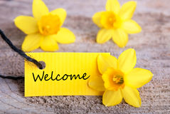 Yellow Label with Welcome. And Yellow Daffodils in the Background stock photos