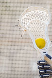Yellow lacrosse ball sitting in the pocket of a stick Royalty Free Stock Image