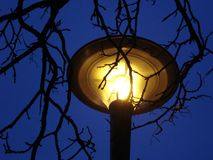 Yellow lamp on night's sky Stock Photo