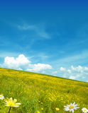 Yellow landscape Royalty Free Stock Images