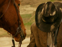 Yellow landscape horse cowboy hat wilde Royalty Free Stock Photography