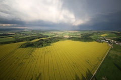 Yellow landscape. Very nice view of the countryside Royalty Free Stock Photo