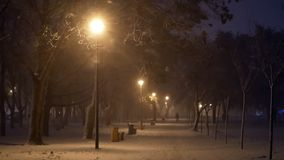 Snow storm night city. Yellow lantern night. Snow, storm, blizzard Park in the city stock video footage