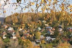 Yellow leaf autumn royalty free stock photos