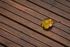 A yellow leaf on a boardwalk royalty free stock photography