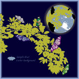 Yellow leaf and butterfly with fullmoon Stock Photos