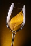 Yellow leaf in a glass Stock Photography