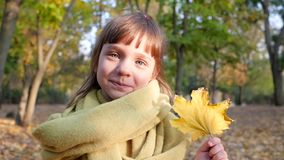 Yellow leaf in hands of little girl on background blurred trees, city park in autumn time. Yellow leaf in hands of little girl on background of blurred trees stock footage