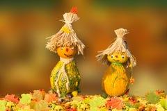 Yellow, Leaf, Scarecrow, Grass Stock Photos