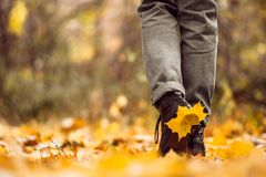 Free Yellow Leaf Stuck To The Women`s Shoe During A Walk Through The Autumn Forest. Indian Summer Royalty Free Stock Image - 149607566