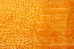 Yellow leather Royalty Free Stock Photography