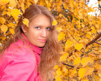 Yellow leaves. Slavic girl against the background of yellow leaves, autumn,portrait Stock Photos