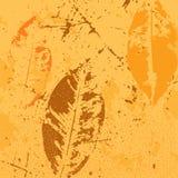 Yellow_leaves Images libres de droits