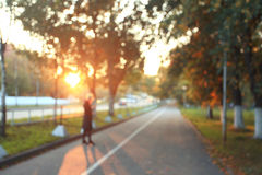 Yellow leaves on an asphalt blurred urban background autumn Stock Image