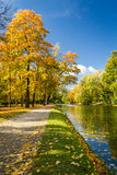 Yellow leaves in autumn park. On the river Royalty Free Stock Photos