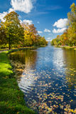 Yellow leaves in the autumn park. Near river Royalty Free Stock Photos